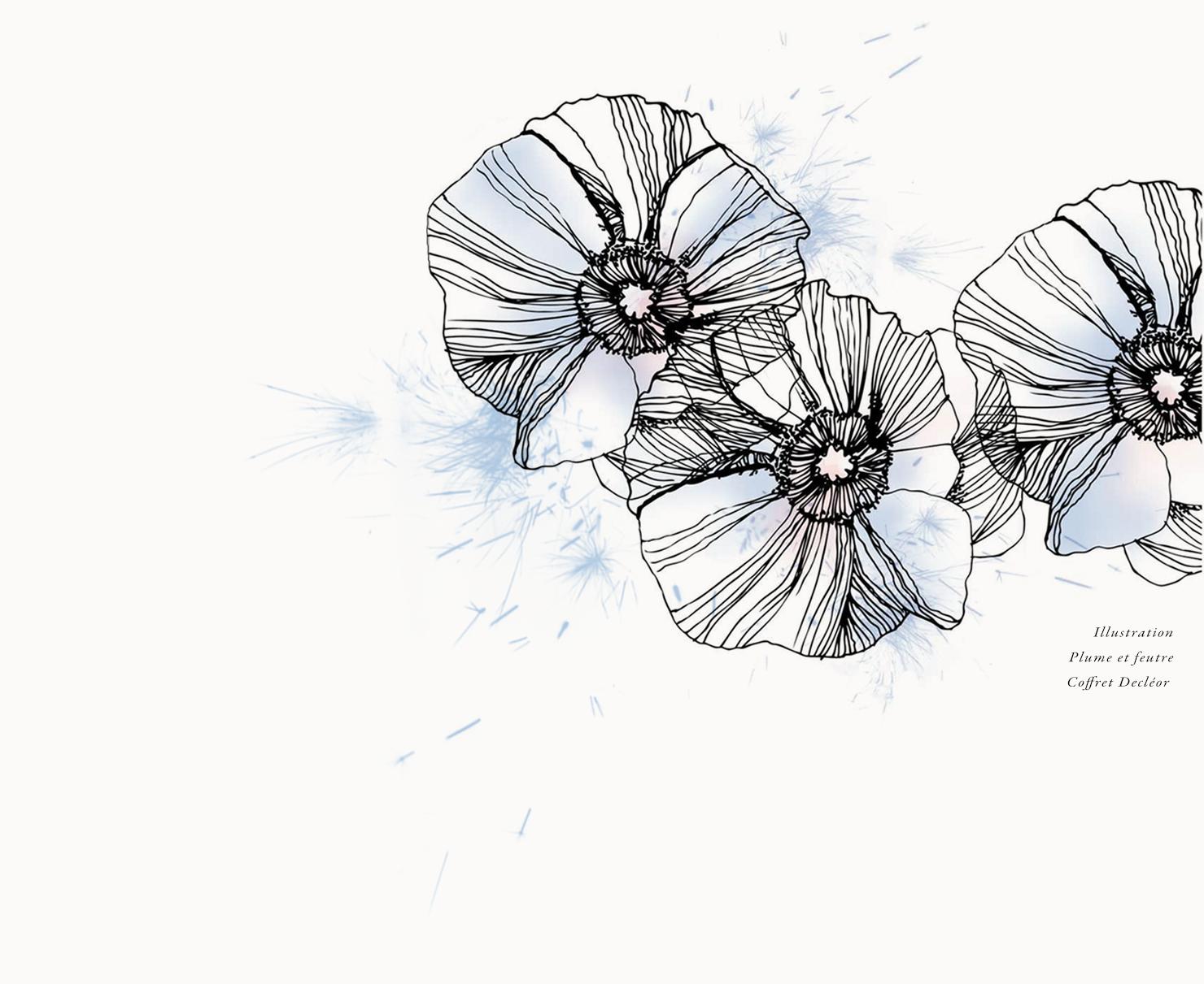 blackandwhite, couleurs, design, fleurs, flowers, graphicdesign,  graphisme, illustration, illustrer, line, noiretblanc